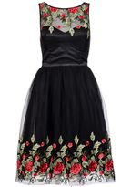 Quiz Black And Red Mesh Embroidered Skater Dress