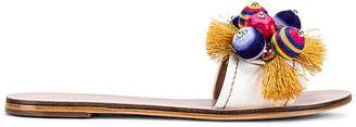 Raye Island Sandal