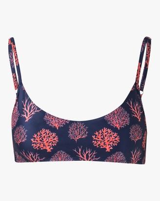 VERDELIMON Coral Sol Bikini Top