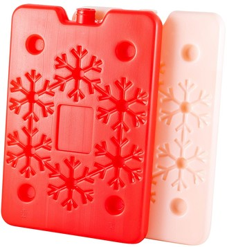 TakeAway Out Plastic 2 Piece Ice Cooler Brick Set Red