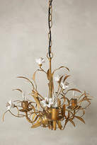 Anthropologie Burgeoning Blooms Chandelier