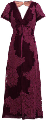 Marchesa Open-back Lace And Velvet Midi Dress