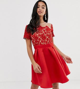 Little Mistress Petite short sleeve upper detail skater dress-Red