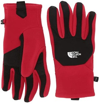 The North Face Denali Etiptm Gloves (TNF Red) Extreme Cold Weather Gloves