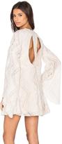 Line & Dot Lyon Lace Dress