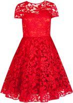 Ted Baker Caree sheer floral overlay dress