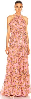 Alexis Genevra Dress in Rose Floral   FWRD