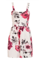 Quiz Cream And Pink Rose Print Dress