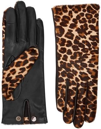 Agnelle Chloe Leopard-print Calf Hair Gloves