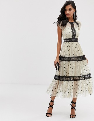 Lace & Beads midi dress in spotty mesh with lace inserts in cream-Multi