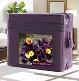 Elegant Comfort Wrinkle-Free 1500 Thread Count Egyptian Quality Deep Pocket, 4-Piece Bed Sheet Set , King, Calla-Eggplant
