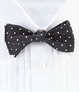 Daniel Cremieux White Dot Silk Bow Tie