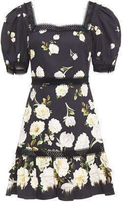 Alice + Olivia Guipure Lace-trimmed Floral-print Cotton-blend Sateen Mini Dress