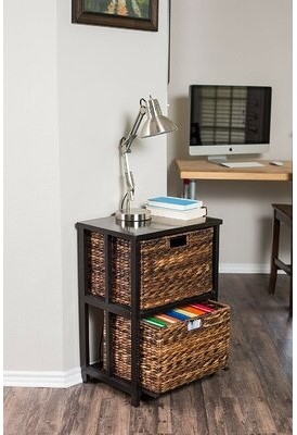 Bay Isle Home Acuna 2-Drawer Vertical Filing Cabinet Color: Black