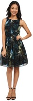 Ted Baker Twilight Floral Pleat Dress