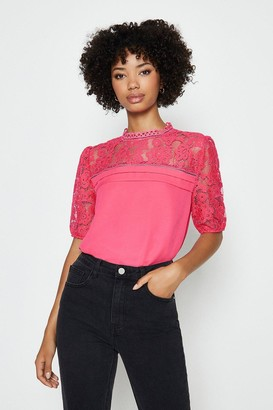 Coast Sleeved Lace Shell Top