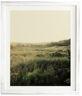 DENY Designs The Meadow by Chelsea Victoria (Framed)