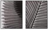 Madison Park Palm Fronds 2-Pc. Deco Box Print Set