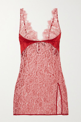 Coco de Mer Anthurium Lace And Satin Camisole - Red