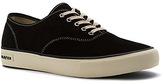 SeaVees Men's Legend Sneaker Varsity