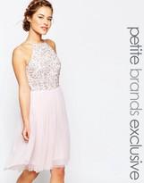 Maya Petite Sequin Bodice Tulle Midi Prom Dress