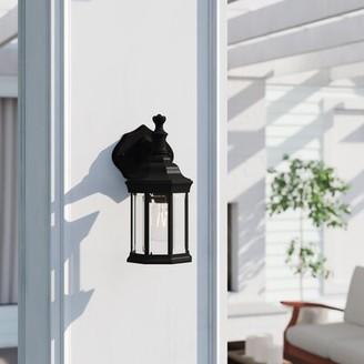 Three Posts Bayou 1-Light Outdoor Glass Shade Wall Lantern Finish: Black