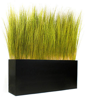 "One Kings Lane 52"" Spiral Grass with Box Planter - Preserved - arrangement, green; vessel, black"