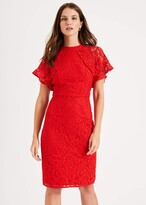 Thumbnail for your product : Phase Eight Luisa Lace Dress