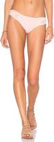 Clube Bossa Bouvier Bikini Bottom