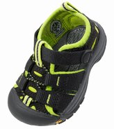 Keen Toddler's Newport H2 Water Shoes 8127412