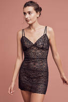 Josie Lily Lace Chemise
