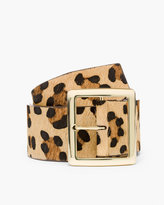 Chico's Whitney Leopard Belt