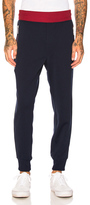 Junya Watanabe Polyester Trousers in Blue,Red.