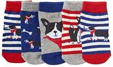 John Lewis Dog Print Socks, Pack of 5, Multi