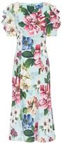 Dolce & Gabbana Floral midi dress