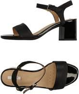 Geox Sandals - Item 11256850