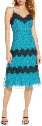Foxiedox Emmie Lace Trim Cocktail Dress
