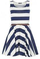 Navy and White Stripe Skater Dress
