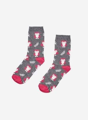Dorothy Perkins Womens Multi Colour Owl Design Ankle Socks