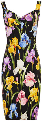 Dolce & Gabbana Floral-print Silk-blend Crepe And Ponte Dress
