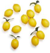 Sur La Table Lemon Vase Fillers