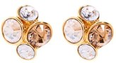 Ted Baker Women's Lynda Jewel Cluster Stud Earrings