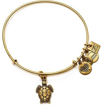 Alex and Ani Sea Turtle Expandable Wire Bangle, Charity by Design Collection