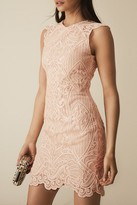 Reiss Roxanda Lace Bodycon Dress