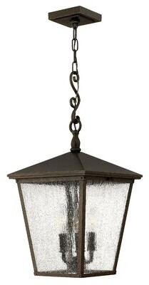 Alexis 3-Light Outdoor Hanging Lantern Fleur De Lis Living Bulb Type: Incandescent