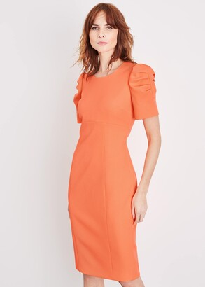 Phase Eight Ella-Mai Fitted Dress