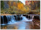 Zion Trademark Fine Art 30 in. x 47 in. Autumn Canvas Art