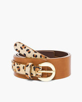 Chico's Arlie Animal Spring Haircalf Belt