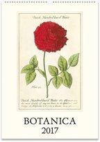 Cavallini CAL17-21 Botanica Wall Calendar