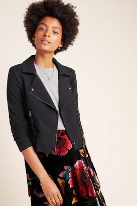 Marrakech Knit Moto Jacket By in Black Size XS